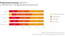 Wykres-3_Prognozowana-sytuacja-ogolna-firm-w-I-połowie-2014-według-sektorów-ekonomicznych